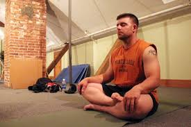 Meditating Vet